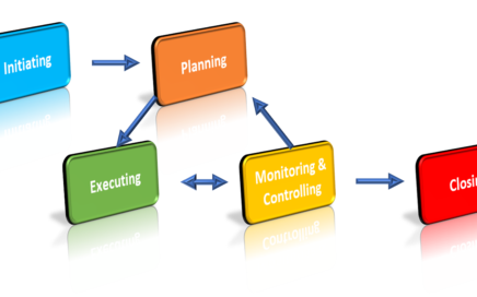 Implementation of Project Management Processes